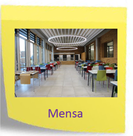 Mensa-1